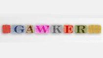 Gawker to sieć popularnych blogów