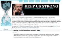 Z powodu wycofywania się kolejnych firm zapewniających obsługę serwisu, WikiLeaks groziło w ostatnich miesiącach zniknięcie z Sieci. Obecnie funkcjonuje on pod kilkoma adresami, a jego kopie bezpieczeństwa przechowywane są na wielu serwerach jednocześnie.