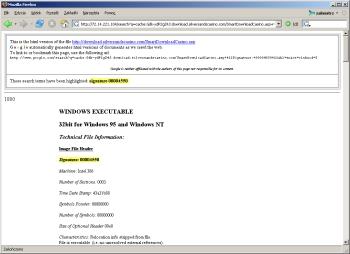 Aby odnaleźć plik EXE w Google'u należy wpisać np. 'Size of Image: 000c1000'