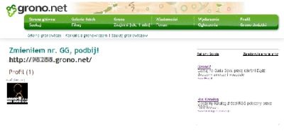 Dla zwykłego internauty, który o grono.net do tej pory tylko słyszał, strona użytkownika grono.net wyglądać może tak.