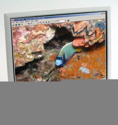 Samsung w modelu SyncMaster 960BF wyraźnie wzorował się na urządzenia Apple. I bardzo dobrze bo monitor jest ładny i dobrze wykonany.