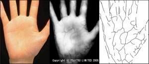Skanowanie naczyń krwionośnych (źródło: Fujitsu)