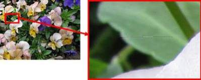 Wykryta usterka, czyli widoczna pozioma linia na zarejestrowanym zdjęciu