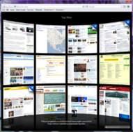 Safari podczas przeglądania stron tworzy listę najbardziej popularnych witryn użytkownika