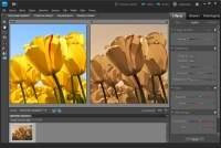 Adobe Photoshop Elements 9.0