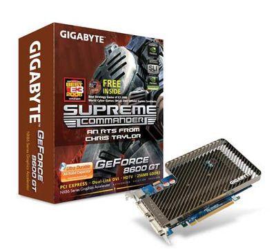 Gigabyte GV-NX86T256D