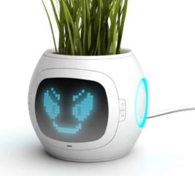 Doniczka Yanko Design o nazwie Pet Plant
