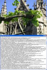 Przykładowy plik graficzny w formacie JPEG, a pod spodem podgląd jego kodu. To właśnie tam potencjalny napastnik może umieścić niebezpieczny fragment kodu.