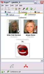 Skype - okno połączenia konferencyjnego
