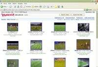 Wyszukiwarka plików wideo Yahoo!